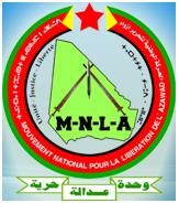 התנועה הלאומית לשחרור אזוואד