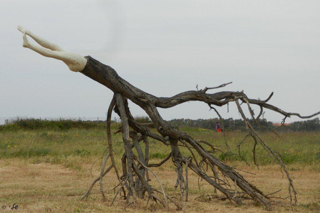 יצירות אקולוגיות שמשתלבות עם הטבע בפארק דינה
