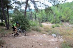 """שביל האופניים החדש ביער שגב. התערבות מועטה בטבע. צילום רונן גולן, קק""""ל"""