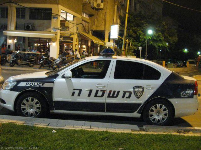 ניידת משטרה (צילמה: שרית פרקול)