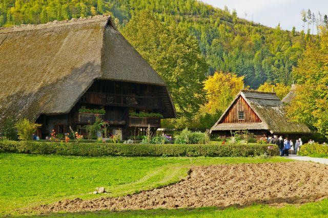 היער השחור בגרמניה. הלהיט של טיולי המשפחות. (צילום:  Erich Spiegelhalter)