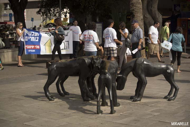 פעילי מפלגת העבודה בהרצליה. צילום: מירה-בל גזית