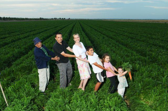 בשבת ה-8 ביוני יתקיים שוק איכרים מקומי במתחם מוזיאון המים בקיבוץ ניר עם, שיציע ממיטב תנובת האיזור: ירקות טריים, ריבות, גבינות, שמן זית ועוד. במקום תתקיים הצגת הילדים