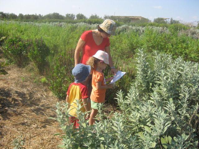 פעילות במבוך מרים שבכפר משה בצפון הנגב. פעילות מלאה ריחות, טעמים וצבעים. (צילום: לבנת גינזבורג)