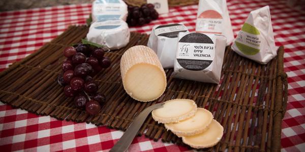 גבינות עיזים בבשומת צרפתית (צילום: אריק סאלין)