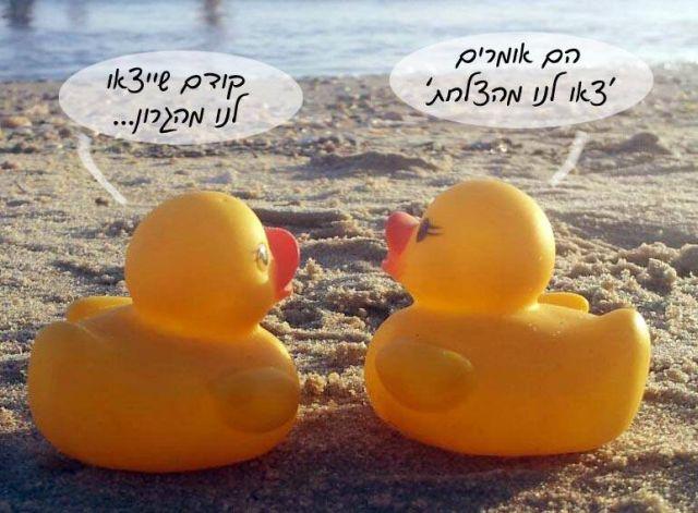 חוק איסור ייבוא כבד עופות מפיטום אושר בוועדה