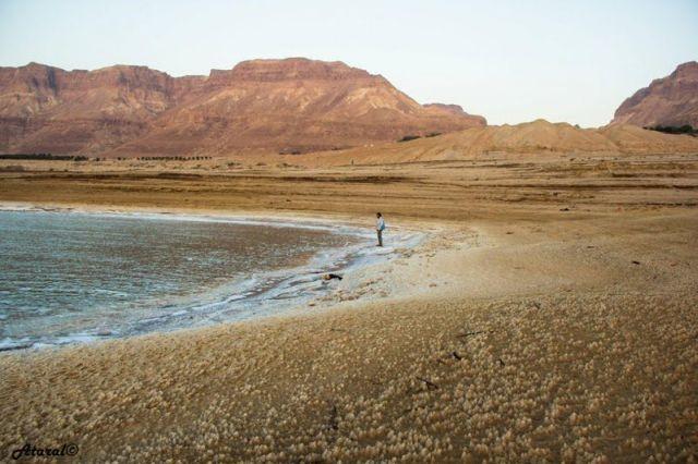 ים המלח (צילמה: עטרה כהן קושקה)