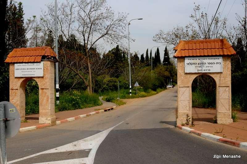 מוסד היסטורי בסכנה (צילום: ציפי מנשה)