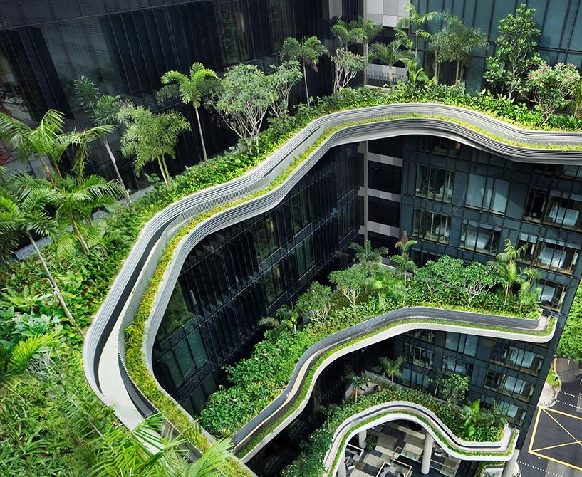 חלק מהגנים התלויים בסינגפור