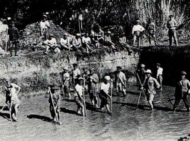 עבודות ניקוז בביצות כבארה בשנת 1925