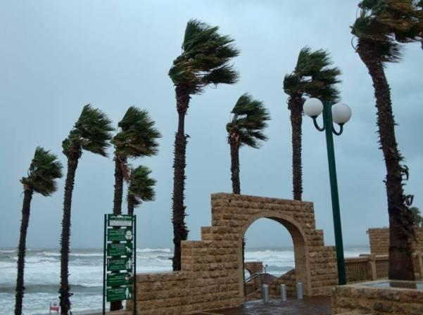 רוחות חזקות וגשם רב במישור החוף. חוף עלייה ביפו (צילום: דן בר דוב)