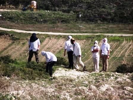 מיידים אבנים בפלסטינים צילום זכאריה סעדה
