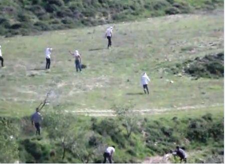 הפלסטינים מגיבים בידויי אבנים - המתנחלים בורחים (צילום: זכאריה סעדה)