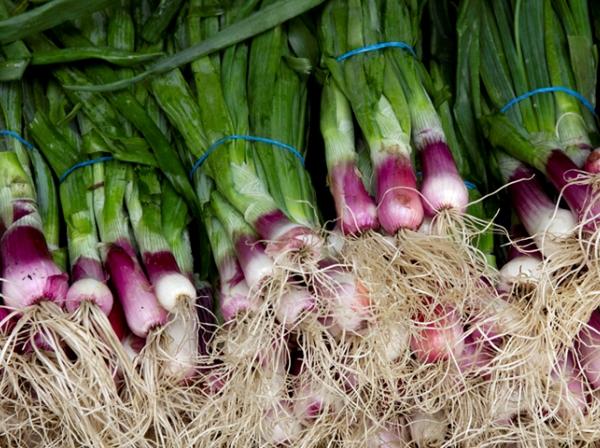האם כדאי לצרוך ירקות אורגניים, קפואים, מעובדים?