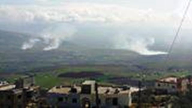פטריות עשן מירי צהל (צילום: אלנשרה הלבנוני)