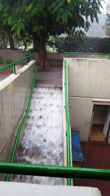 ואז המים החלו לשטוף (צילום: חדשות לפני כולם )