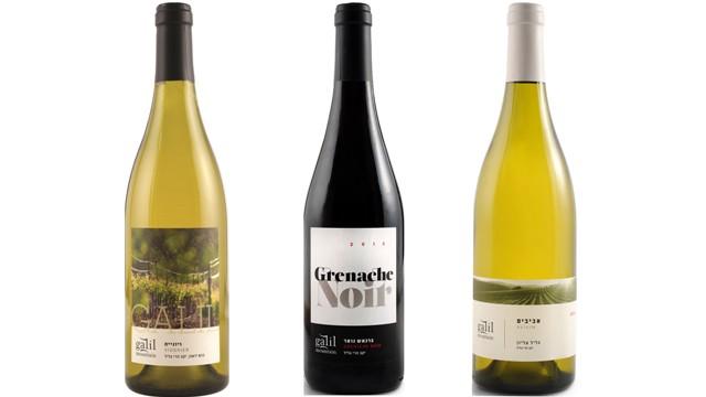 חדשות קולינריה: יין, חומץ, חטיף ולחם