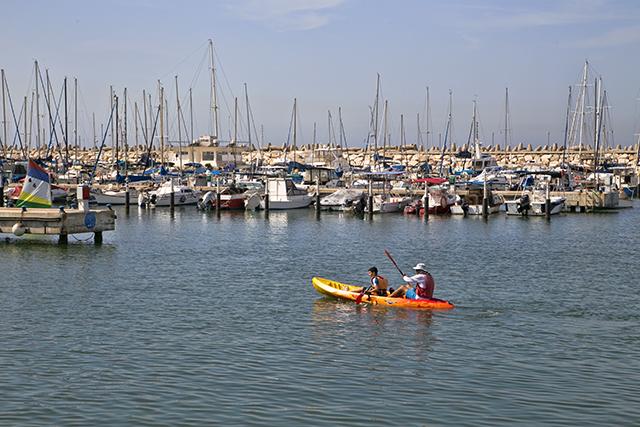 מגוון סוגי ספורט ימי (צילום: דן בר-דוב)