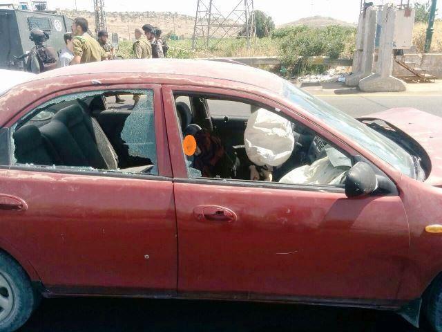 הצעירה  - מג'ד אל חודור: ניסיון פיגוע או תאונת דרכים