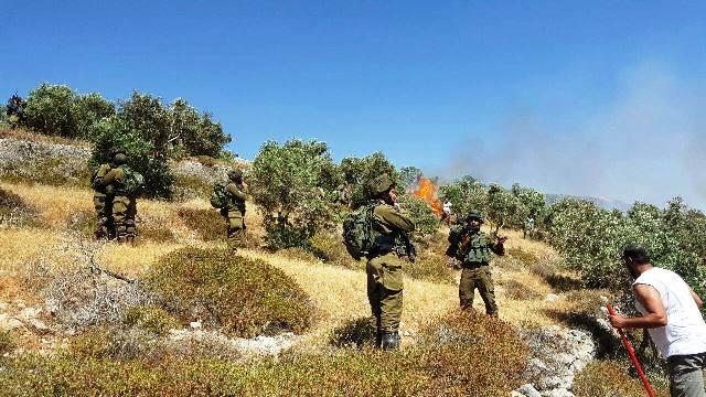 10 במאי - שוטרים וחיילים עוצרים פלסטיני  ומתעלמים מיידויי אבנים של מתנחלים