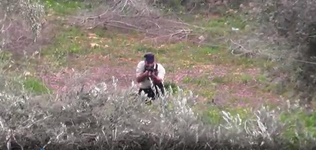 מכוון את הרובה (צילום מסך)