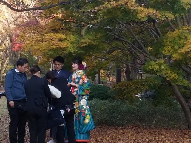 מסלול טיול שלכת ביפן כי הסתיו כבר בפתח