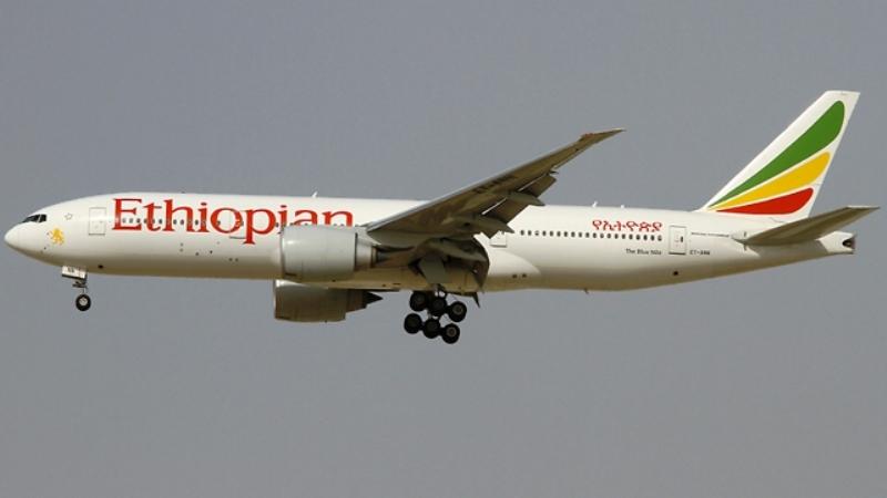 מטוס של אתיופיין איירלינס (צילום ארכיון: אתיופיין איירליינס )