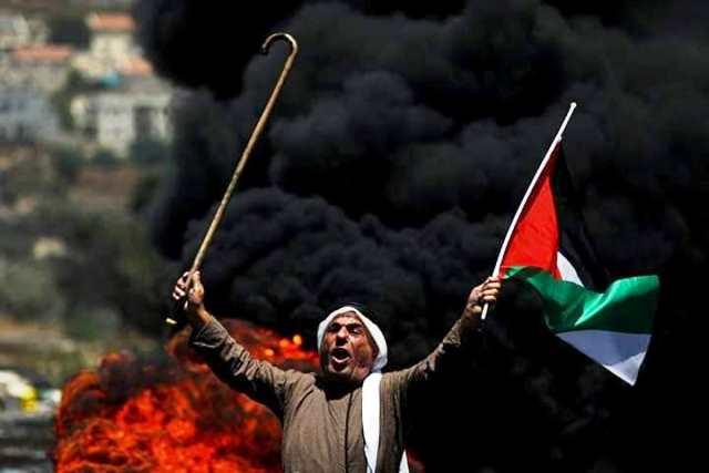 צילום: אתר Gaza now / Wafaa A. Al-Udaini - gaza