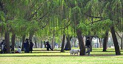 הוארך מעצרם של עובדי עיריית תל אביב, בהם מקורב לחולדאי