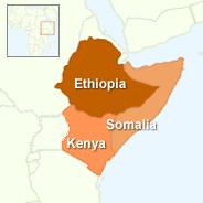 """דו""""ח בריטי: עיכוב בסיוע לאפריקה גרם למותם ברעב של רבבות"""