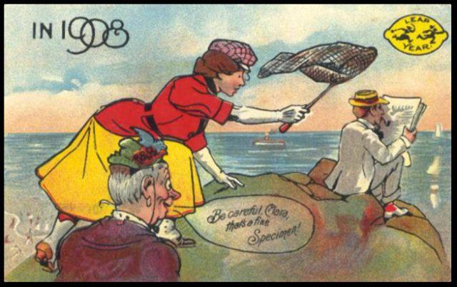 גלויה משנת 1908