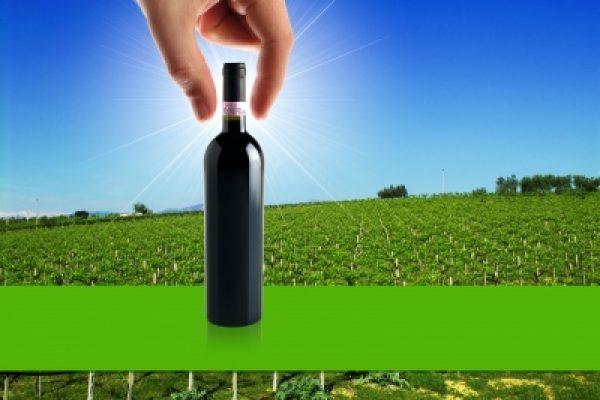 גזור ושמור: איך תראה כאילו אתה מבין ביין?