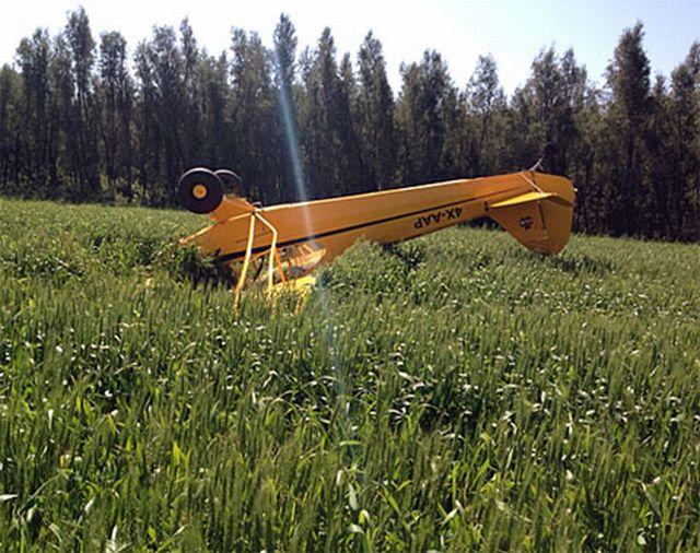 הפייפר הפוך בשדה
