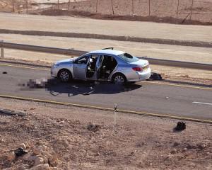 """חלק מקורבנות הפיגוע. כביש 12 (צילום: דו""""צ)"""