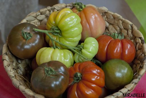 עגבניות מסוג לב השור (Beefsteak/Coeur De Boeuf). נדיה ג'נטיקס, הוד השרון. תערוכת אגרומשוב 2012
