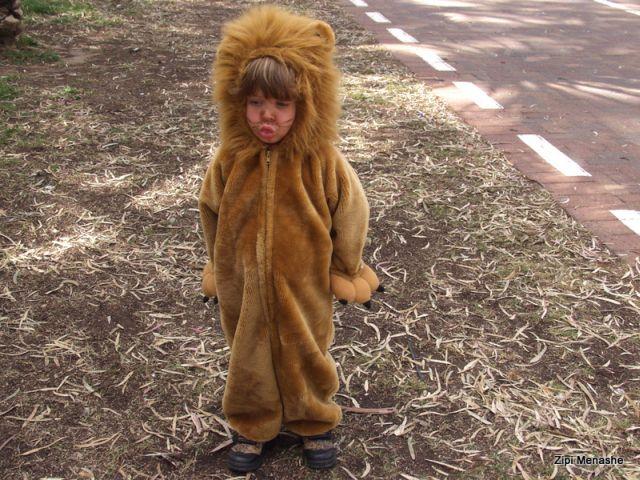 תחפושת אריה (צילמה: ציפי מנשה)