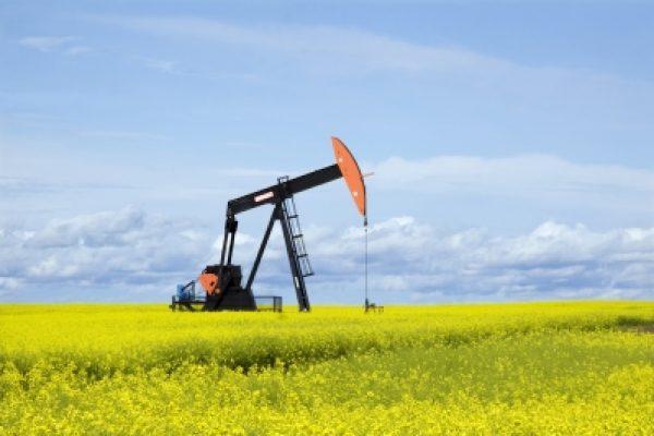 מחירי הנפט ממשיכים לצנוח – בקרוב גם הדלק