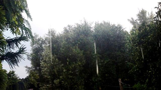 גשם זלעפות בגליל המערבי