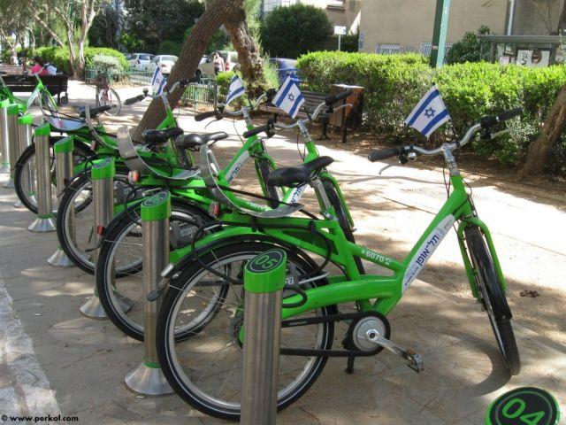 אופניים (צילמה: שרית פרקול)