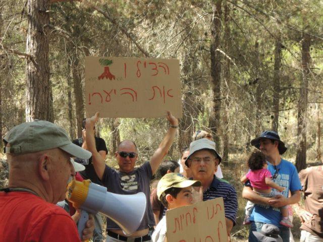 מאבק ציבורי להצלת אלף עצים עתיקים ליד הר אדר