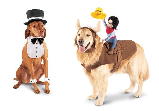 הצעות לתחפושת לכלבים: חתן וקאובוי - רשת Target. צילום: Target Brands
