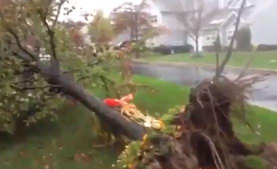 מדריך לנפגעי הסערה