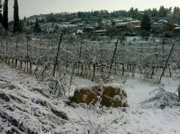 שלג באבו גוש (צילום: משטרת ישראל)
