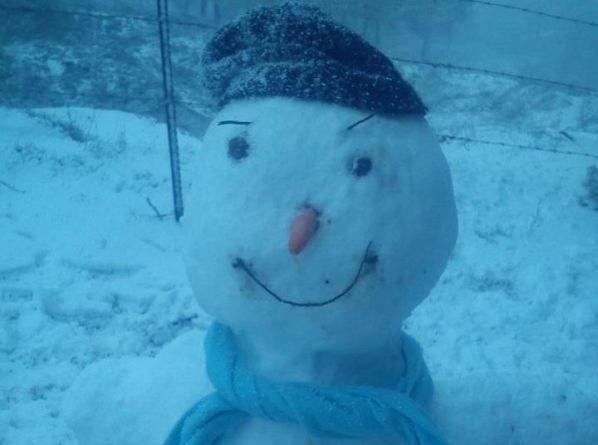 איש שלג בין עמוקה לצפת (צילום: נעמי בן-אמוץ)