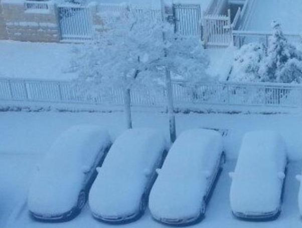 מכוניות עטויות שלג בצפת (צילום: משטרת ישראל)