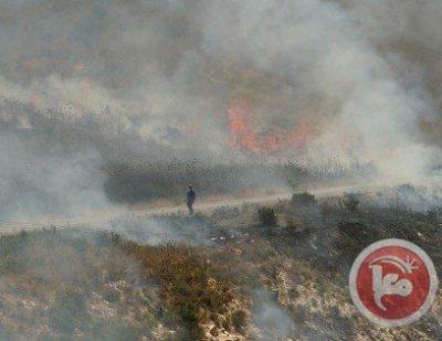הצתות בכפר קוסרא (צילום: סוכנות מען)