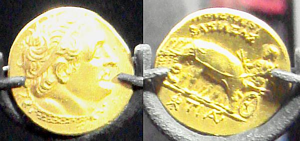 מטבעות עתיקים של אחד מבני שושלת התלמיים, שנתגלו בחפירות הרקליון הקדומה. על המטבעות הוטבעו פילים, כסמל לעוצמת המלך (מקור: ויקימדיה)