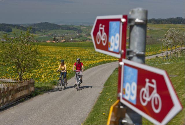 רוכבים על אופניים בשוויץ. הנוסע רוכב או הולך את הדרך במסלול משולט וברור. (צילום: באדיבות swiss1)