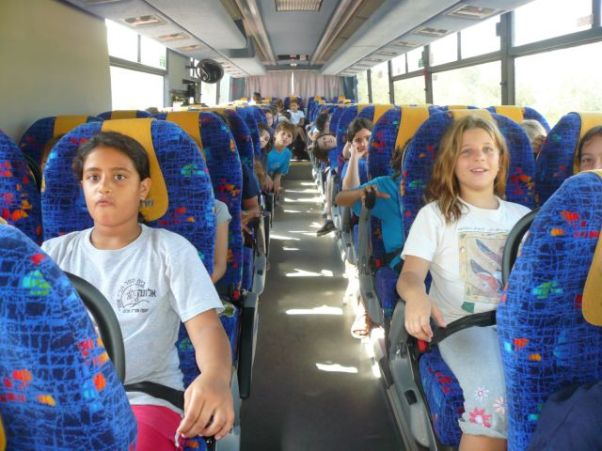 """חגורות בטיחות באוטובוס. (צילום: בטיחות בדרכים, בב""""ד)"""