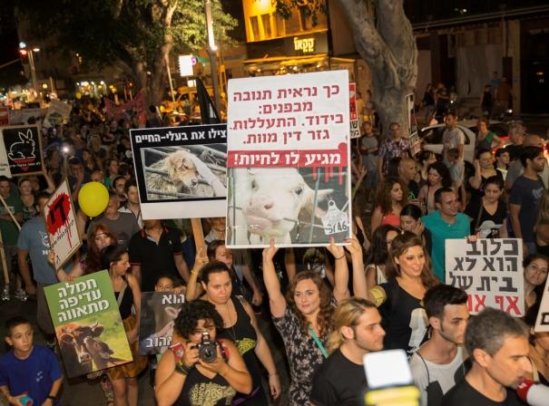 """אירוע בפייסבוק סחף 3,000 מפגינים בת""""א למען בעלי חיים"""